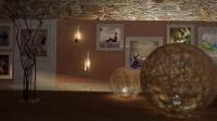 Videohive 1834- 酒庄画廊AE相册模板-星星非编素材