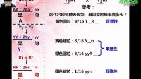 孟德尔遗传规律计算(0)
