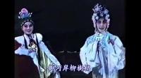 豫剧 《狸猫换太子》全剧   王海玲 马金凤