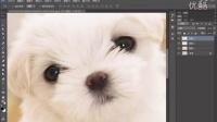 [PS]ps插件 ps教程 ps入门 photoshop动作