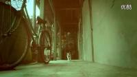 视频: 中国首支喵星人微电影:备胎猫的故事,笑屎了