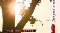 这里是北京 2014 秋北京 银杏有话说 141029