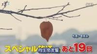 【堺S】Legal High SP2014预告中字