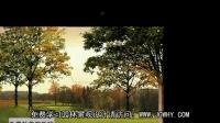 免费园林景观设计教程_前景树处理技巧