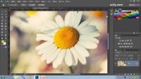 [PS]photoshop教程PS教程11.移动工具和缩放工具