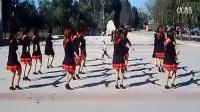 热门广场舞  爱拼才会赢  广场舞视频下载教学舞蹈_标清