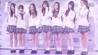 【饭拍】141112 Lovelyz showcase photowall [datanews]