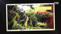 致最美好的时光(2013婚礼婚庆开场视频AE模板素材婚礼开场_标清