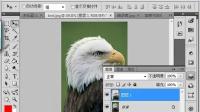 [PS]photoshop教程视频全集-(17.魔术棒工具)ps基础教程学 新手入门
