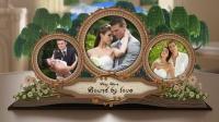 经典婚礼翻折书籍相册动画AE模板_173
