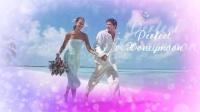 NO.081 唯美浪漫婚礼图片展示模板 AE模板