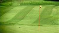 CS810高尔夫 草坪 标旗 影视实拍视频素材1080P