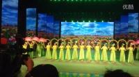 余姚马渚镇金马舞蹈队在2014宋城全国广场舞总决赛