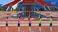 2014最新广场舞蹈视频大全 爱拼才会赢 _高清
