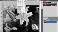 [PS]PhotoshopCS4从入门到精通中文教程-10.8分离通道_标清