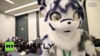 Japan- Kemono lovers flaunt their inner furry BEAST