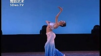 第十届桃李杯舞蹈比赛高清完整版 梅玉炫傣族舞蹈组合 中国舞 少年乙组 组合男子女子独舞_576x432_2.00M_h.264
