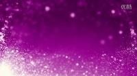 紫色粒子高清视频素材影视素材舞台晚会背景婚礼素材婚礼背景浪漫爱情开场