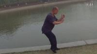 形意拳练法。五行劲。抖擞劲