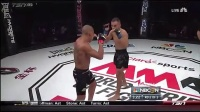 WSOF.16.Palhares.vs.Fitch.正赛