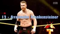 WWE(NXT) Sami Zayn 二十大招数