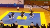 龙英知府视频:龙英道场2014浙江省总决赛跆拳舞冠军视频