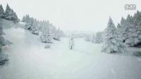 下雪的圣诞树森林
