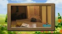央视少儿频道:优酷土豆轻松时刻之可爱猫咪 快乐新一年 150101 轻松时刻