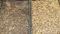 视频: 水稻插秧技术教学视频 中国水稻研究所监制 杭州金昌摄影摄像制作有限公司拍摄制作QQ2105874681