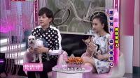 美丽俏佳人 重庆卫视  2015 萌宠驾到 读懂宠物心 150121 狗狗吃巧克力可致死亡