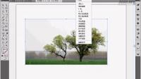 [Ai]Illustrator CS4教程11.2自动描摹图像