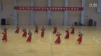 女子维族盘子舞《花儿为什么这样红》