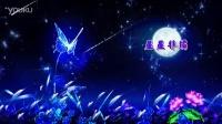VJ094 唯美蝴蝶月色 浪漫星空 晚会舞台LED大屏幕背景素材_超