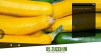 Videohive Fruits Slideshow美食水果电视节目栏目包装AE模板