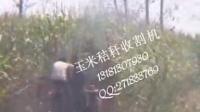 四轮拖拉机带动的玉米秸秆割晒机田间收割视频