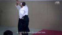 Aikido- Christian Tissier Paris Dec 2014