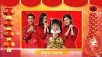 40_羊年新年春节年会新春元宵企业拜年AE片头视频模板