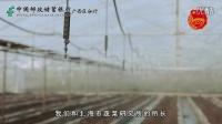 创富大赛获奖企业展示——北海绿鑫农业