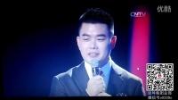 思埠集团黛莱美冠名2015年CCTV网络春晚