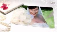 AE模板1952 香槟玫瑰婚礼照片水墨晕开AE模板