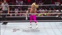 【百度女摔吧】WWE Divas Finishers 2014