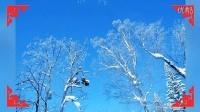 我的图片MV_《我爱你塞北的雪》