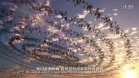 2015宜信公司宣传片-中语中英字幕版