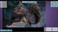 NEW!-史上最方便快捷的照片建模工具诞生!Smoothie-3D- squirrel modeling
