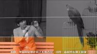 大话娱乐圈 2015 韩媒评:颜值最高的中国十大男神 284