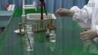 018.探究盐酸中哪种粒子使紫色石蕊溶液变红