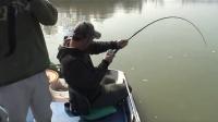 钓鱼视频水库野钓实战高清钓鱼方法 春天钓鱼方法 玉米粒钓鱼方法