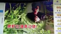 视频: 陕西幸福说三弦书梁山伯祝英台2015临县秧歌《风》协会【新】Q群26632980