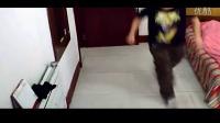 鬼步舞视频 鬼步舞教程6个基本动作 鬼步舞高手