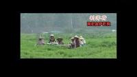 浅析自走式水稻收割机  多功能牧草收割机割麦机割草机